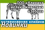 ООО «Клиника мелких животных «Зебра»: Наши новинки