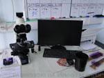 МБУЗ «Консультативно-диагностический центр»