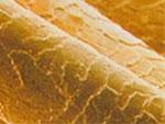 Компьютерная диагностика состояния волос и кожи головы. Имидж-студия Елены Даниленко «Mix»
