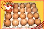 Яйцо Высшей категории. Яйцо куриное от производителя