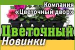 Компания «Цветочный двор»: Наши новинки