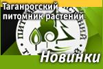 Таганрогский питомник растений: Наши новинки