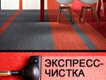 Экспресс-чистка ковровых покрытий. Клининговая компания «Альбатрос Плюс»