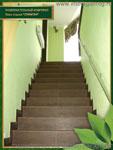 Лестница на 2 этаж. Развлекательный комплекс базы отдыха «Олимпия»