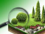 Таганрогский питомник растений